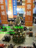 中塔大中圣诞树1