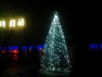 楼盘中奥广场首站大型圣诞树